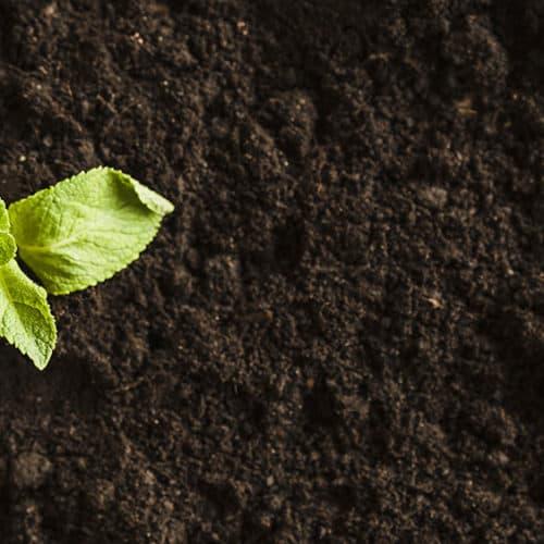 Filtro carboni attivi