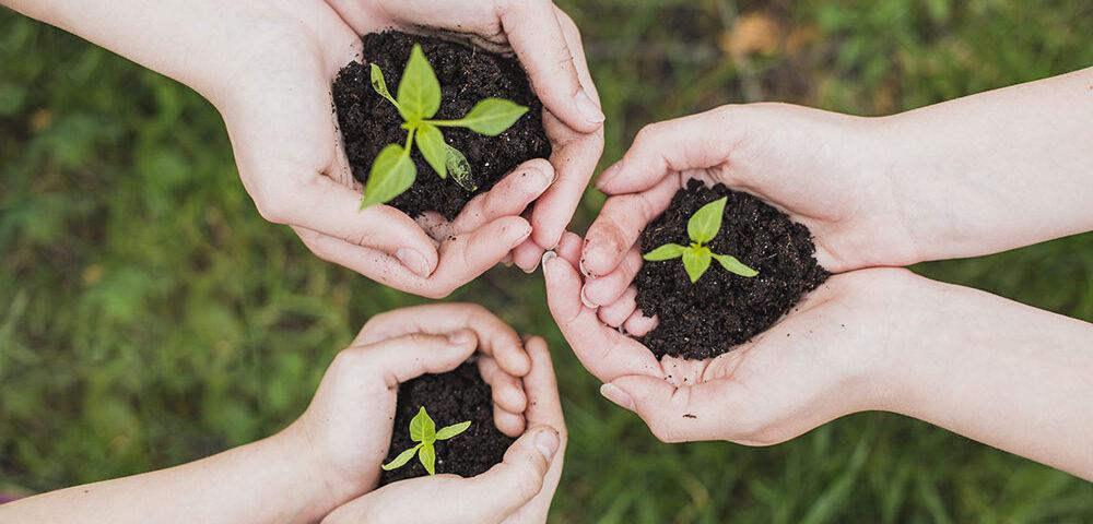 KIT Antiodore per coltivazione indoor