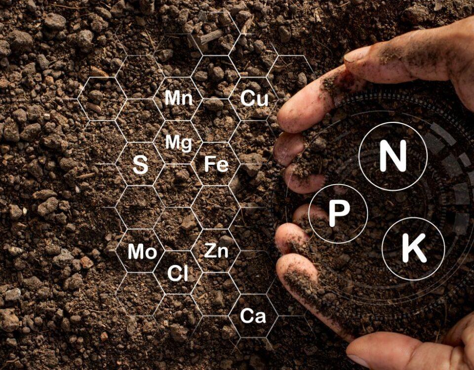 Fertilizzanti sul suolo