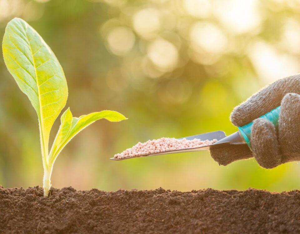 fertilizza la terra