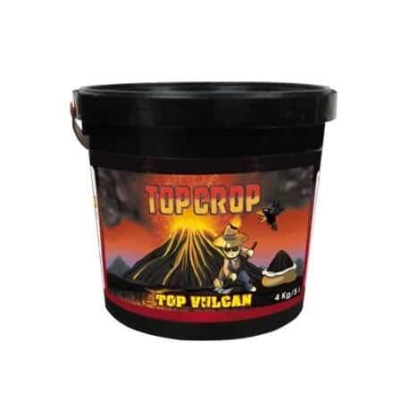Top Crop Top Vulcan